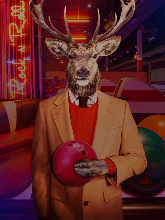 Collage of images of an illustration of a deer holding a bowling ball wearing a suit, neon signs that say BOWL, and bowling alleys